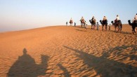 The treasure trove of sights in India can be as surprising and numerous as the bowel movements it induces. One of the most spectacular places to find a wide variety...
