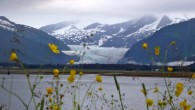 One of the main reasons for my planned escape to Alaska's wilderness was to experience a polar opposite.  After spending months in tropical forests of Central and South America, I...