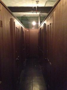 Micro, Capsule, Tiny Hotel Rooms in New York City