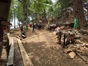 Waystation on Hike to Yubeng